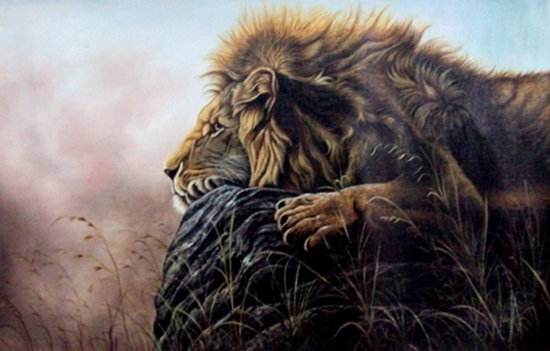Wild Life Paintings In Oil Colour On Canvas By Rakesh