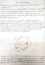 Essay by Devangi Chaudhuri