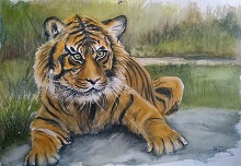 Indiaart - Wildlife Artwork
