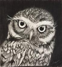 Bright Eyed OWL, Painting by Madhu Awasthi
