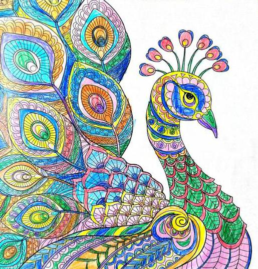 Painting  by Prerna Tyagi - Peacocks
