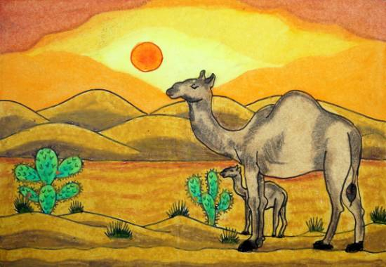 Painting  by Aadhya Dwivedi - Baby Camel and Mother