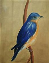 An eastern blue bird, painting by Swati Gogate, Oil on Canvas, 24 x 18 inches