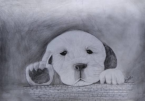 Golden retriever puppy, painting by Aniket Vibhute