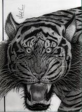Painting  by Vishal Kumar Punia - The Angry Tiger