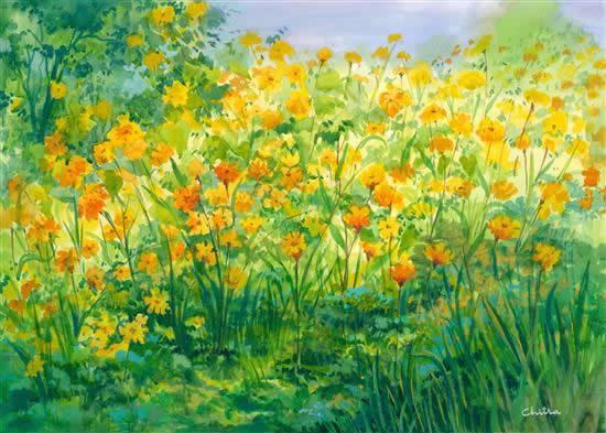 Yellow Cosmos, painting by Chitra Vaidya