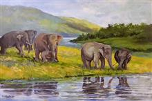 Wildlife - In stock painting