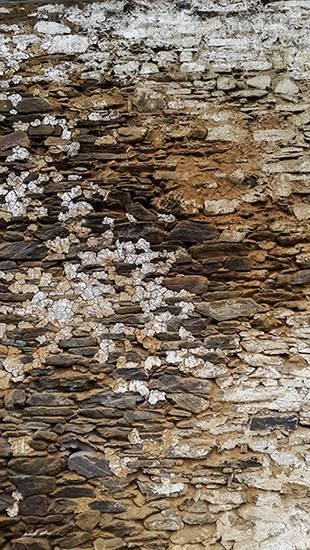 Texture on the monastery wall at Gangtey, Bhutan