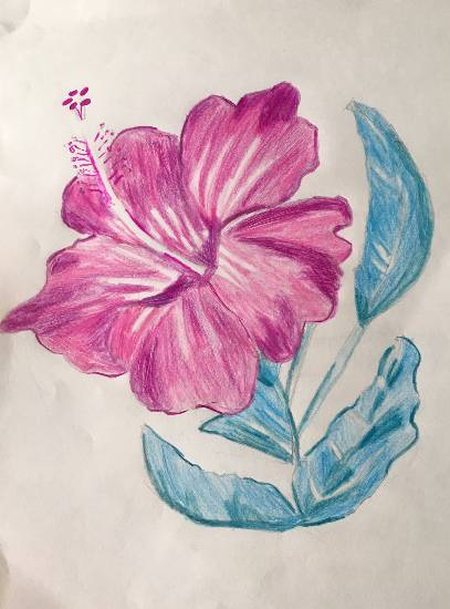 painting by Sharanya Das - Pink Bloom