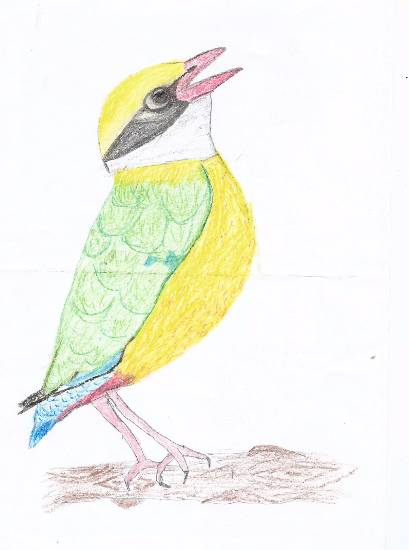 Bird, painting by Tanay Nikheel Kelkar