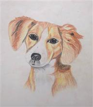 Painting  by Sahil Anand Kanojiya - Dog