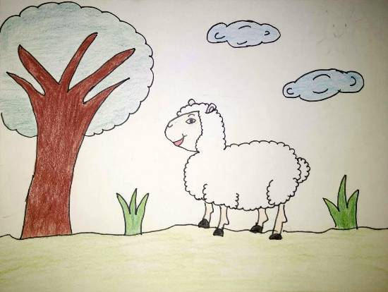 Painting  by Ananya Satish Pisharody - Sheep