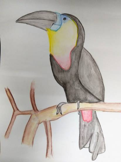 Painting  by Parinaz Hoshedar Davar - Woodpecker