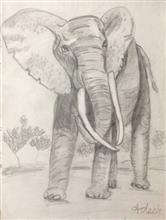 Painting  by Adeeb Singh - The Elephant