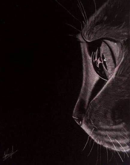Painting  by Pranjal Singh - The cat