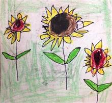 Painting  by Dhanishta Devendra Suryavanshi - Sunflower