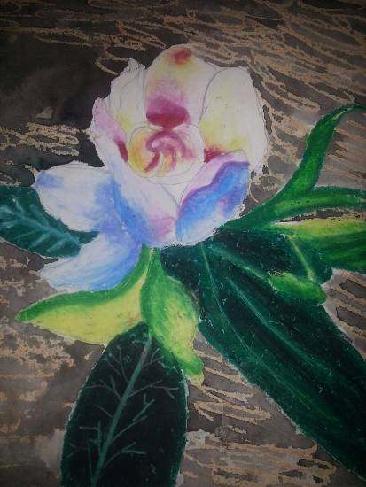 Flower, painting by Mariya Kapadia