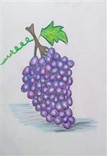 Painting  by Toshani Mehra - Bunch of grapes