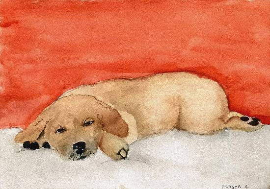 painting by Pragya Amber Gupta - Dog