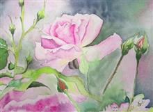 Blushing Pink Rose, Painting by Ratnamala Indulkar