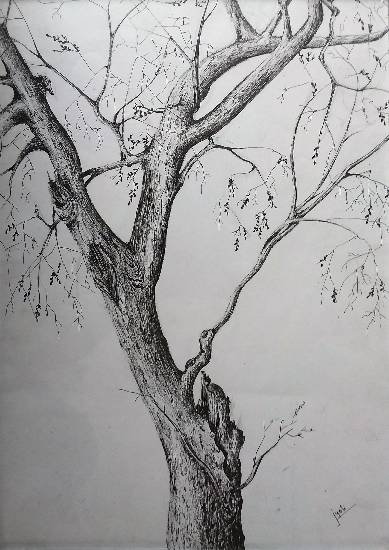 Tree branch, painting by Jyoti Sharma