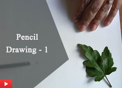 How to draw | Pencil Drawing - 1