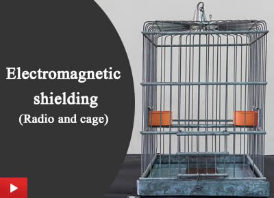 Electromagnetic shielding (Radio and cage)