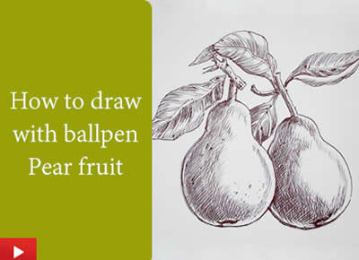 How to do ballpoint pen drawing of pear fruit