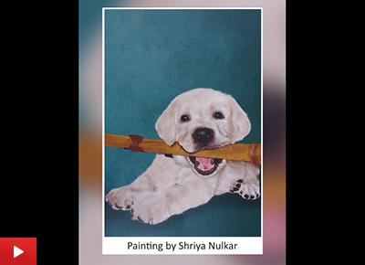 Bingo, the Labrador - digital painting by Shriya Nulkar
