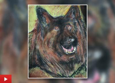 The German Shepherd, painting by Peter Ashwin Ronald S (22 years)