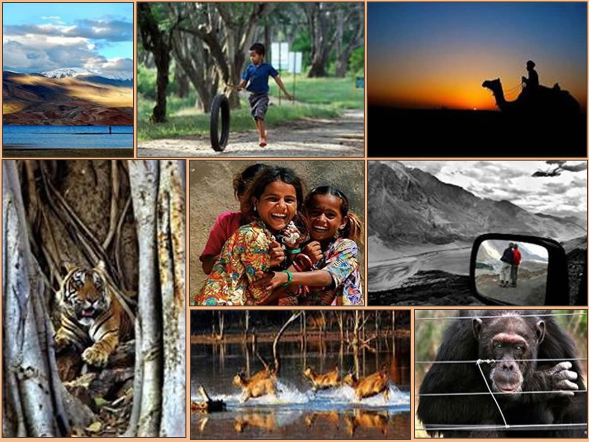 Missing Compass A Photo Exhibition on Travel by Jungle Lore